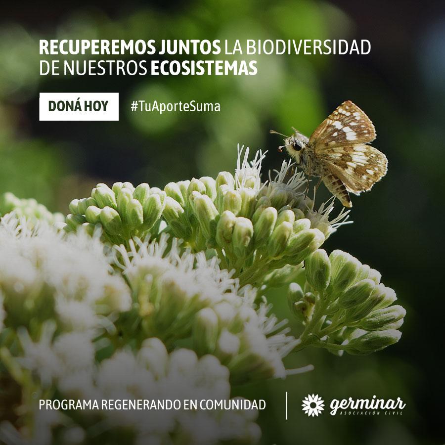 Donar ayuda a recuperar la biodiversidad